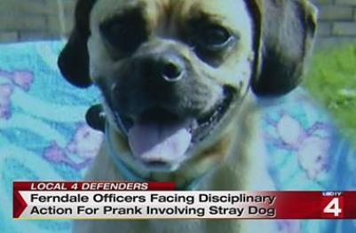 stray dog police prank michigan