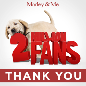 marley and me nbc pilot