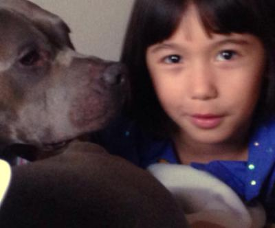 santa refuses autistic girl and pit bull service dog