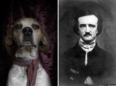 poetic dogs edgar allen poe