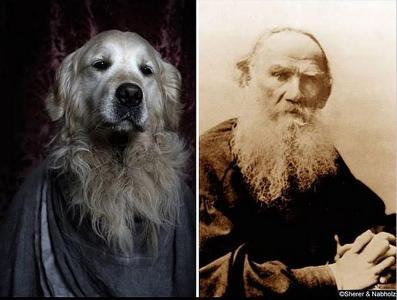 poetic dogs leo tolsky