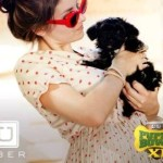 Uber Taxi App Delivers Adoptable Puppies for 15 Minutes of Playtime