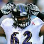 Terrence Cody, Under Investigation for Dog Abuse, Cut from Baltimore Ravens