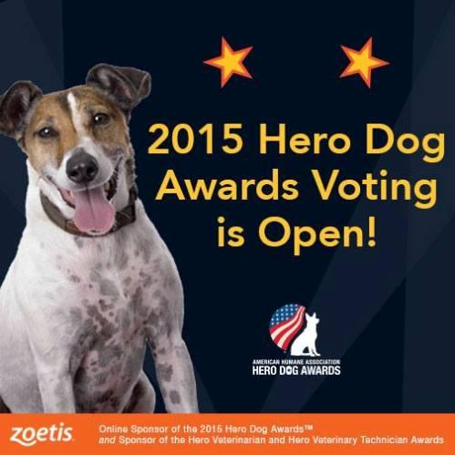 2015 american humane association hero dog awards
