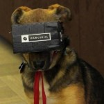 'Pawculus' is First-Ever Virtual Reality Game for Dogs