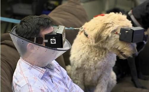 pawculus virtual reality for dogs cone extension