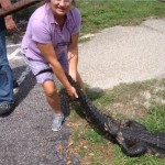 Fearless Florida Woman Grabs Alligator, Saving Her Dog