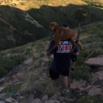Firefighter Carries Dog 2 Miles from Utah Mountain Ledge to Safety