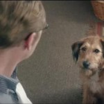 'Absolutely Anything' Stars Robin Williams as Voice of Talking Dog