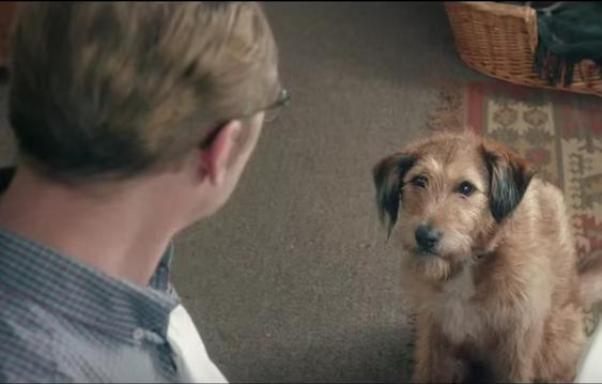 Absolutely Anything with Robin Williams as Dennis the dog