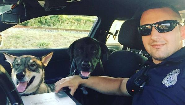 Roanoke Officer Kulish rescues 2 stray dogs