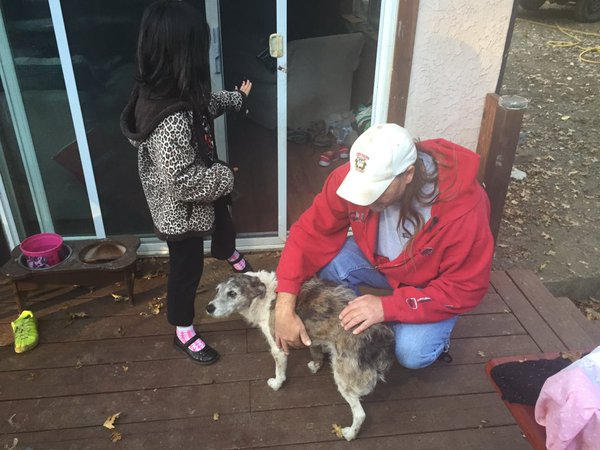 man saves dog from mountain lion