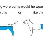 Raging New Internet Debate: How Would a Dog Wear Pants?