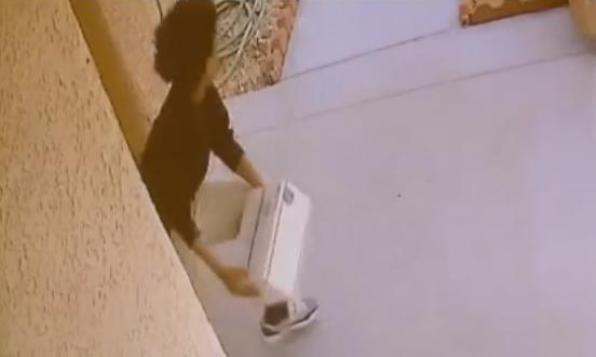 thief steals dog poop package