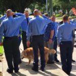 R.I.P. Bretagne, Last Surviving 9/11 Search-and-Rescue Dog