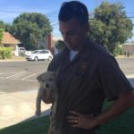 UPS Driver Rescues Puppy Dumped on Road