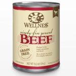 RECALL ALERT: Wellness Ninety-Five Percent Beef Topper for Dogs