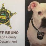 Shelter Dog Bruno Becomes Indiana's First Law Enforcement Comfort Dog