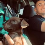 LAPD Adopts Puppy Found on a Busy Hollywood Street